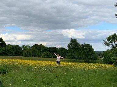 Jilly in a field